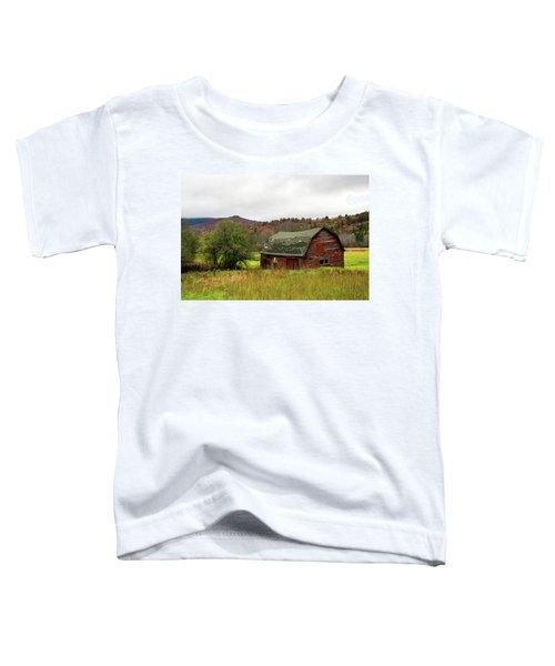 Old Red Adirondack Barn Toddler T-Shirt