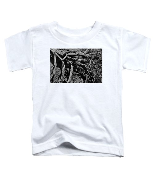 Old Sagebrush Toddler T-Shirt