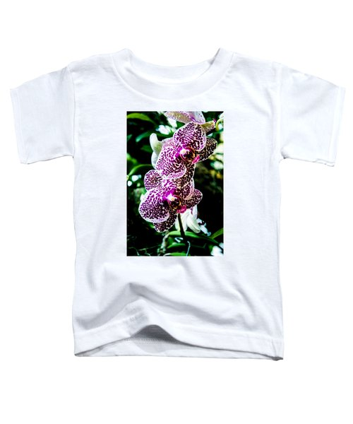 Orchid - Pla236 Toddler T-Shirt