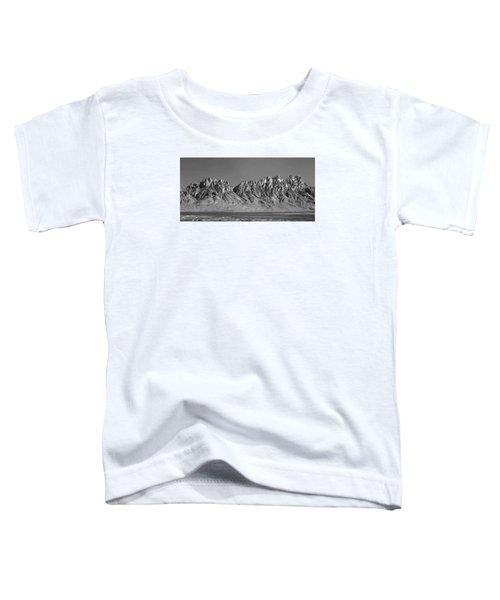 214878-organ Mountains Panorama     Toddler T-Shirt