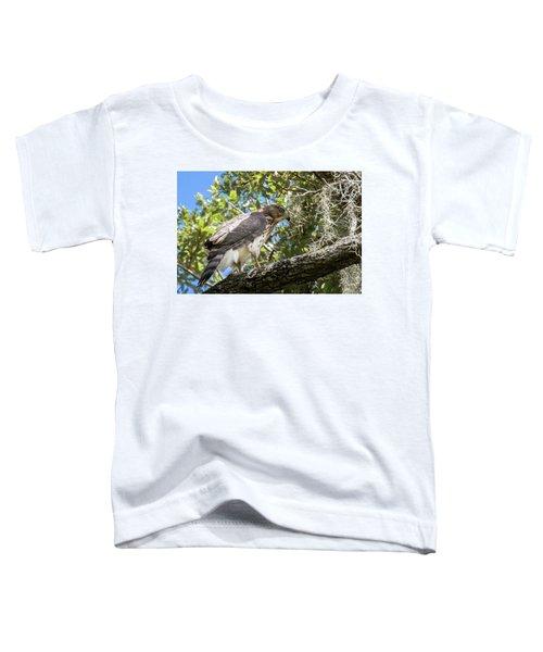 Red-shouldered Hawk Fledgling - 4 Toddler T-Shirt