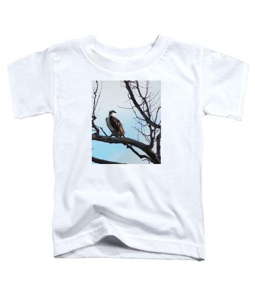 Osprey In Tree Toddler T-Shirt