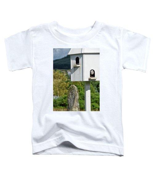 Peek-a-doo Toddler T-Shirt
