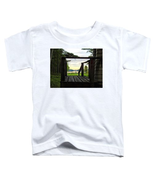 Picture Perfect Toddler T-Shirt