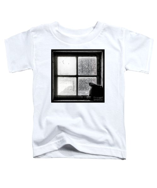 Pitcher In The Window Toddler T-Shirt