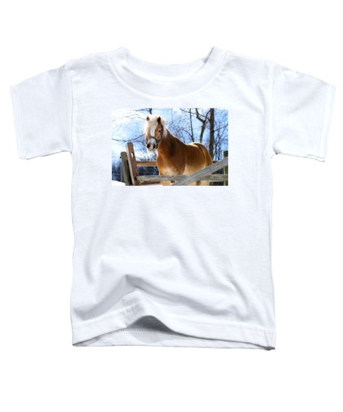 Portrait Of A Haflinger - Niko In Winter Toddler T-Shirt