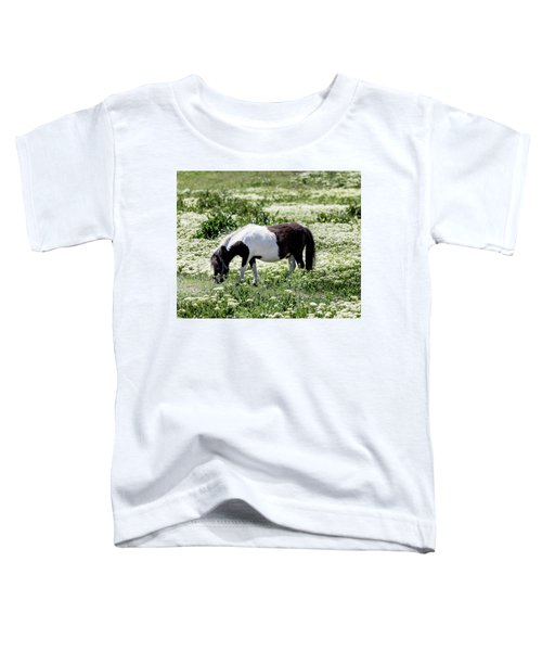 Pretty Painted Pony Toddler T-Shirt by James BO Insogna