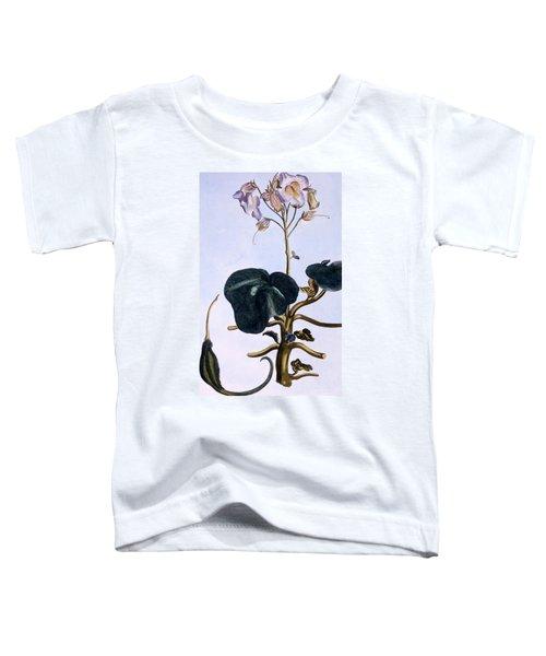 Proboscis Flower Toddler T-Shirt
