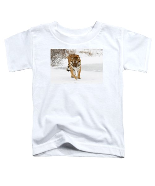 Prowling Tiger Toddler T-Shirt