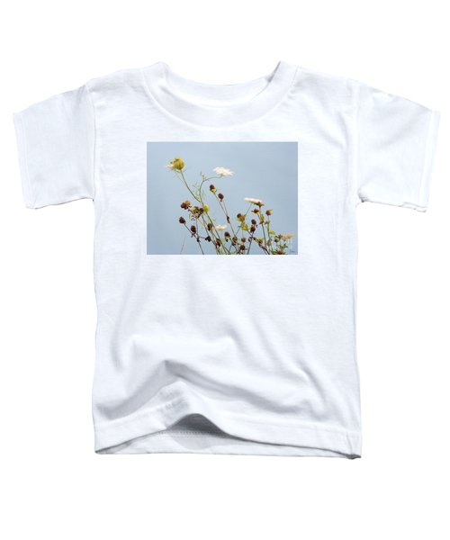 Queen Anne's Lace And Dried Clovers Toddler T-Shirt