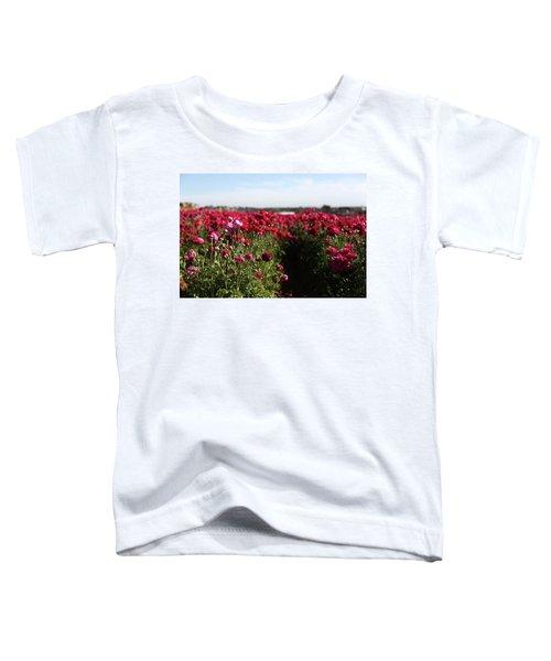 Ranunculus Field Toddler T-Shirt