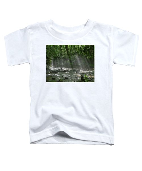 Rays Through The Trees Toddler T-Shirt