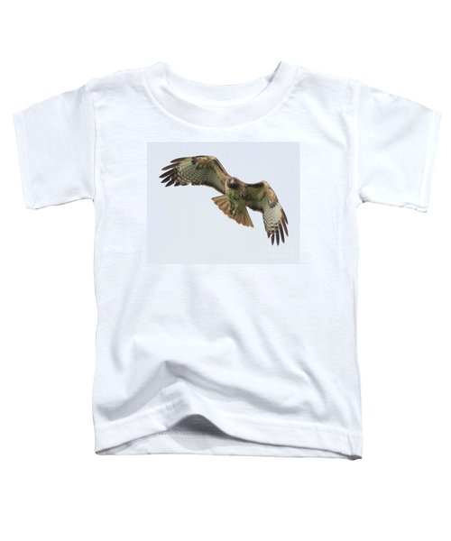Red Tailed Hawk Finds Its Prey Toddler T-Shirt