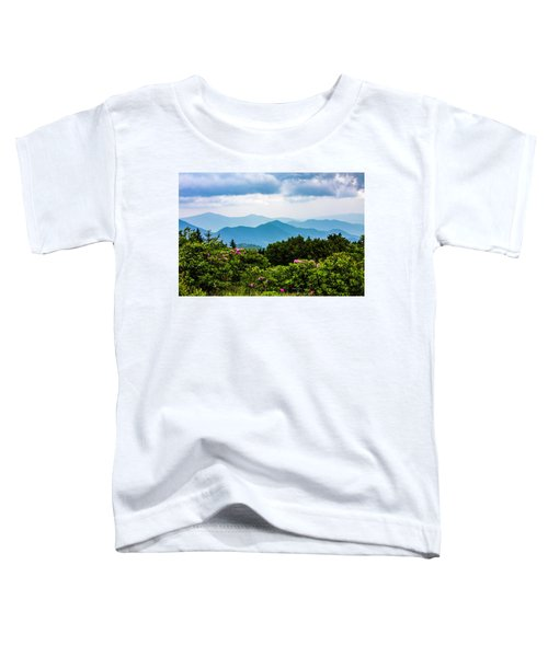 Roan Mountain Rhodos Toddler T-Shirt