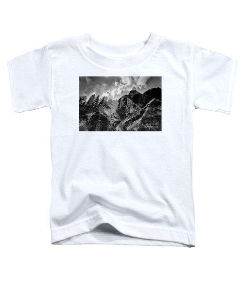 Rock #9542 Bw Version Toddler T-Shirt