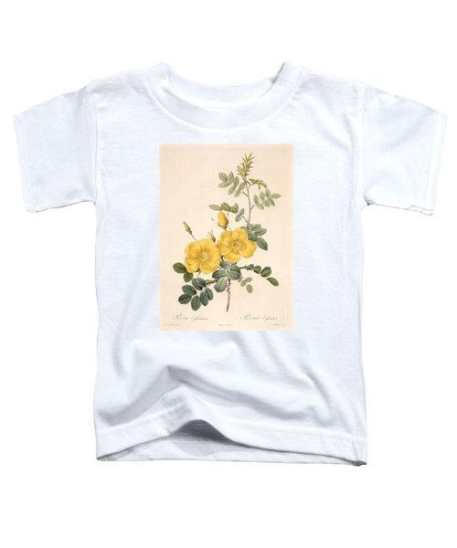 Rosa Eglanteria Toddler T-Shirt