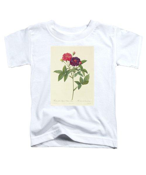 Rosa Gallica Purpurea Velutina Toddler T-Shirt