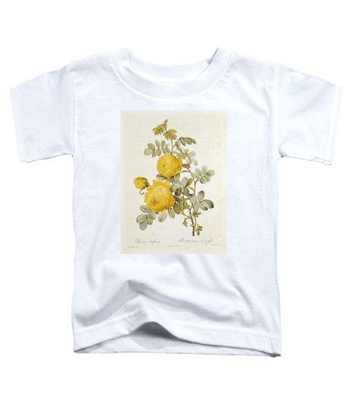 Rosa Sulfurea Toddler T-Shirt