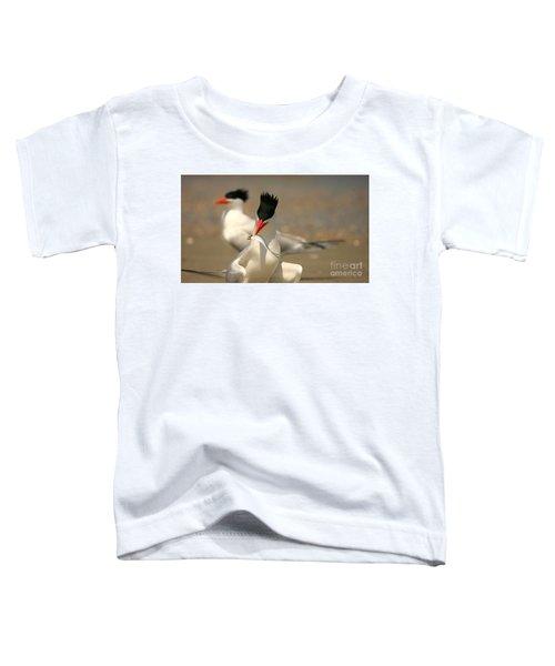 Royal Tern Catch Toddler T-Shirt