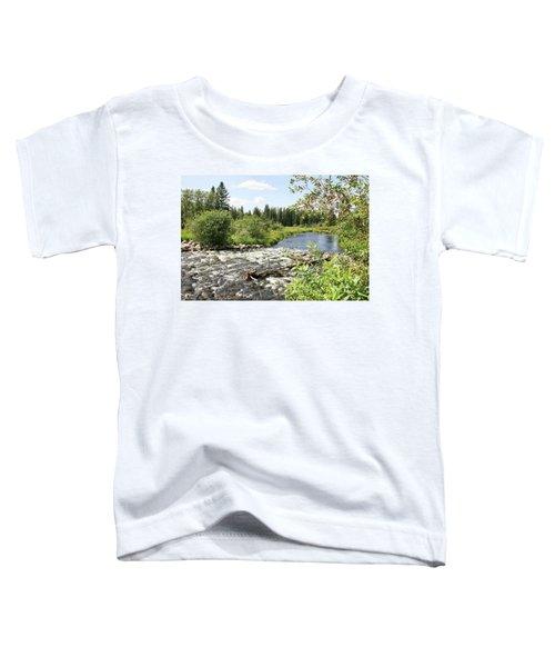 Saginas Lake Toddler T-Shirt