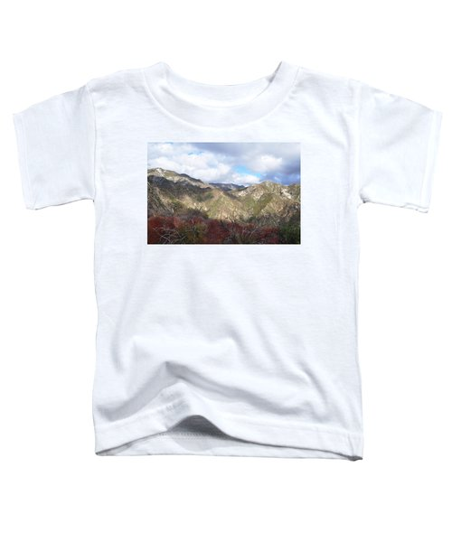 San Gabriel Mountains National Monument Toddler T-Shirt