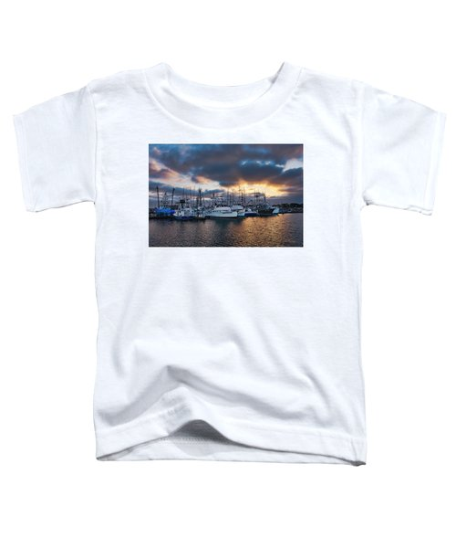 Sand Dollar Toddler T-Shirt