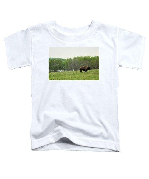 Saskatchewan Buffalo Toddler T-Shirt