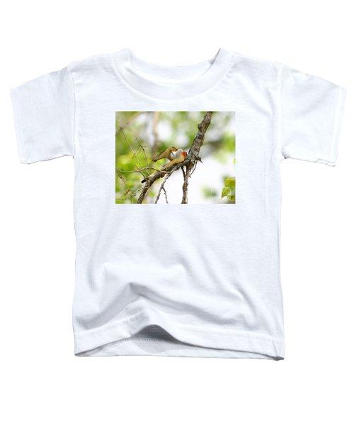 Scissortail Ballet Toddler T-Shirt by Robert Frederick