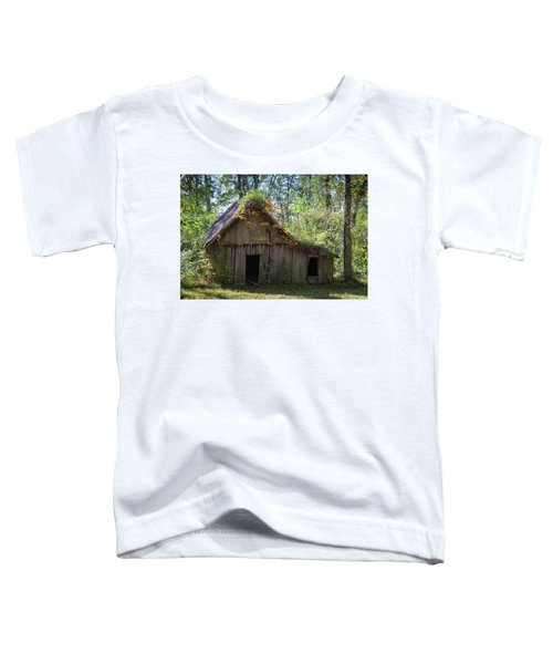 Shack In The Woods Toddler T-Shirt