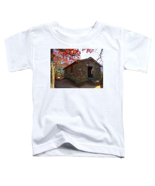 Blood Mountain Shelter Toddler T-Shirt
