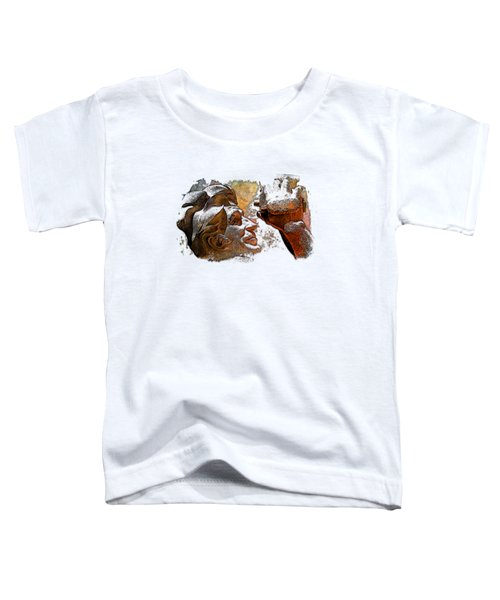 Shoot For The Sky Earthy Rainbow 3 Dimensional Toddler T-Shirt