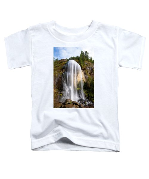 Silver Falls Toddler T-Shirt