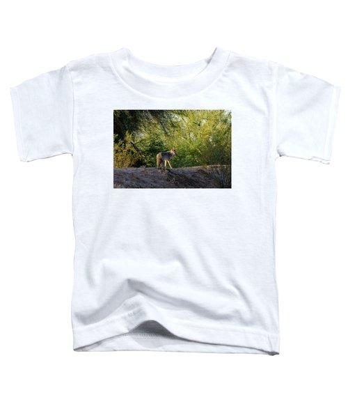 Sleepy Coyote Toddler T-Shirt