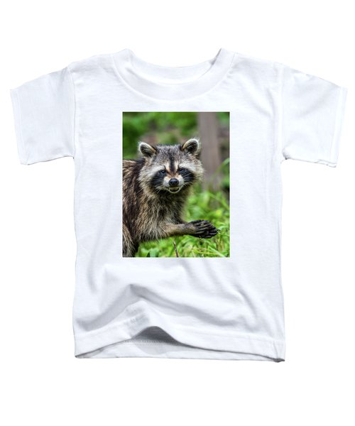 Smiling Raccoon Toddler T-Shirt by Paul Freidlund