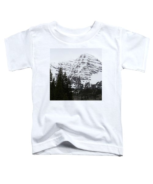 Snowy Striations Toddler T-Shirt