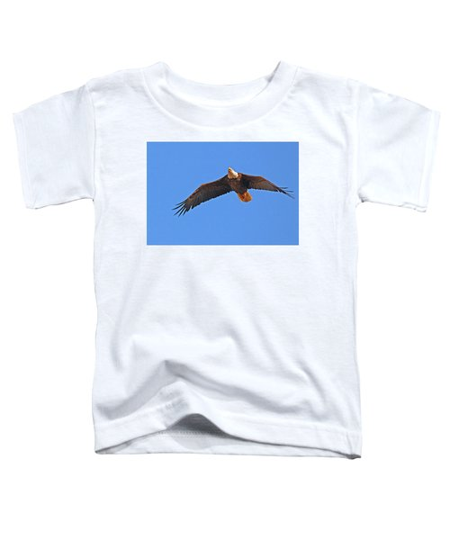 Soaring Eagle Toddler T-Shirt