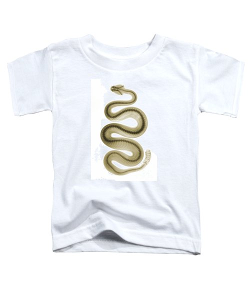 Southern Pacific Rattlesnake, X-ray Toddler T-Shirt