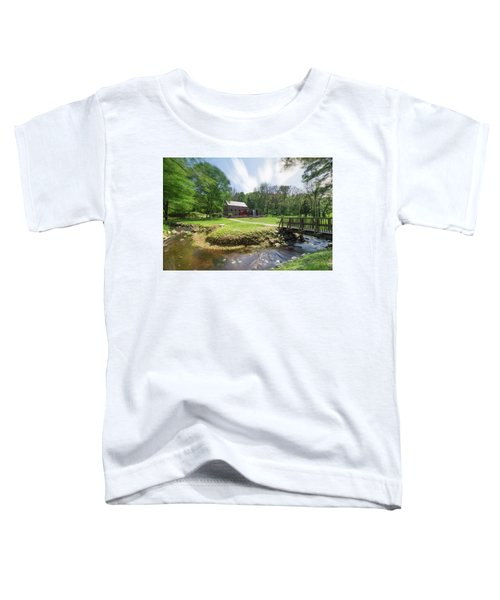 Spring In Sudbury Toddler T-Shirt