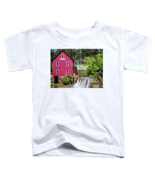Starr's Mill 2 Toddler T-Shirt