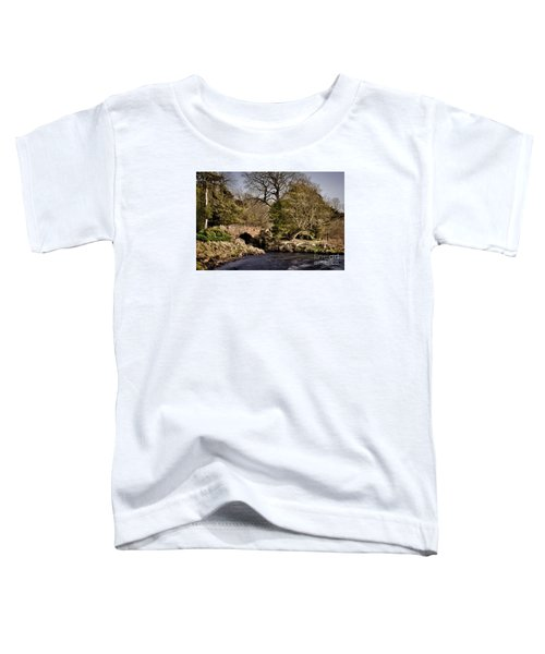 Stone Bridge On The Lake Toddler T-Shirt