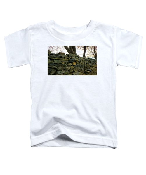 Stone Wall, Colt State Park Toddler T-Shirt