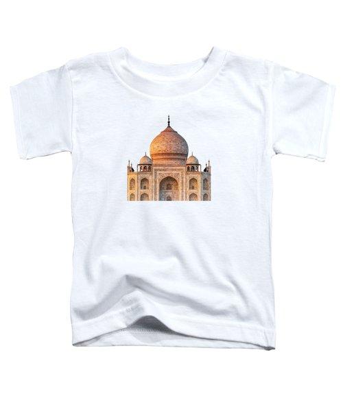 Taj Mahal T Toddler T-Shirt