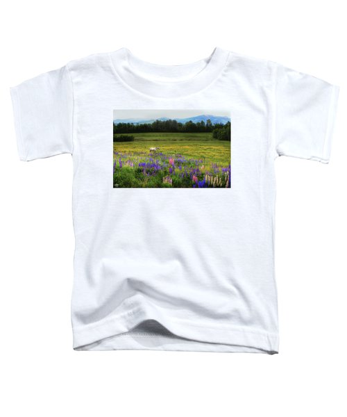 Taking In The View Toddler T-Shirt