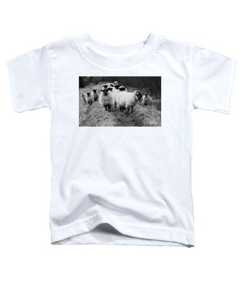 The Flock 1 Toddler T-Shirt