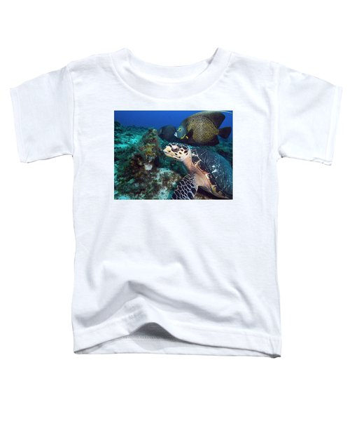 The Green Turtle And The Angelfish Toddler T-Shirt