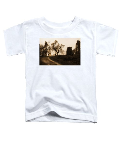 The Road To Turkey Point Lighthouse Toddler T-Shirt