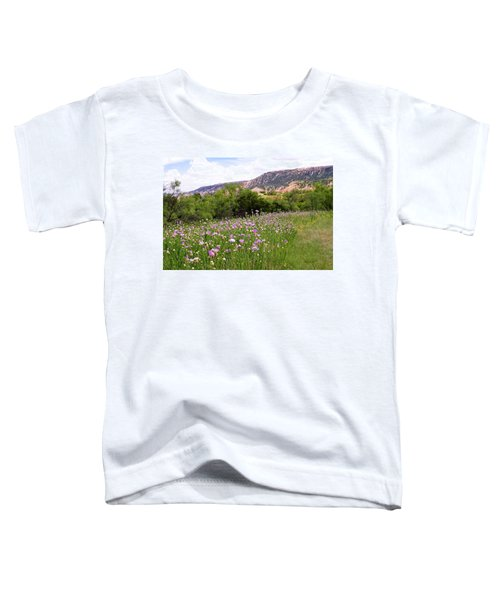 Thistles In The Canyon Toddler T-Shirt