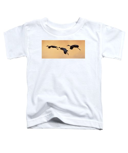 Three's Comapany Toddler T-Shirt