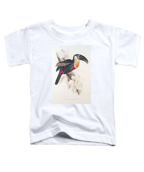 Toucan Toddler T-Shirt by Edward Lear