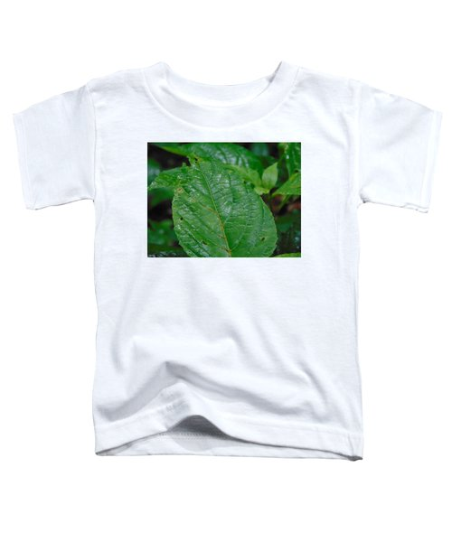 Trail Vibes Toddler T-Shirt